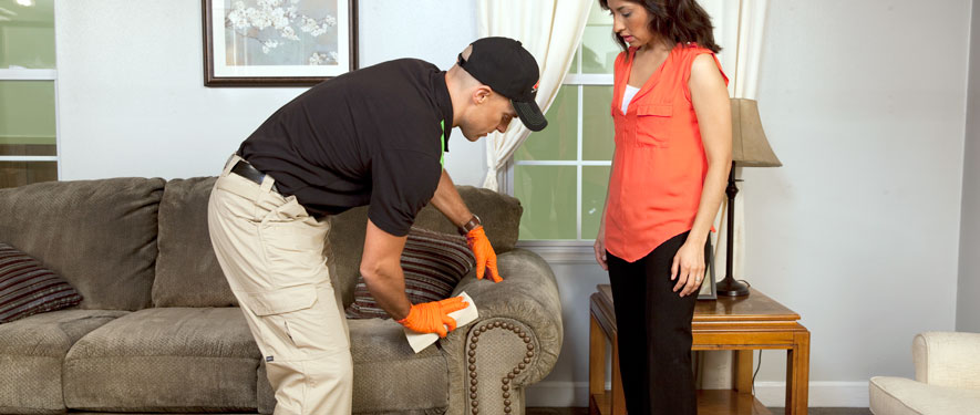 La Mesa, CA carpet upholstery cleaning